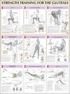 Ejercicios - Fitness - Strength Training For The Glutes Chart Fitness Workouts, At Home Workouts, Fitness Motivation, Butt Workouts, Glutes Workout Men, Lower Body Workouts, Training Workouts, Hip Strengthening Exercises, Upper Glute Exercises