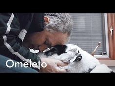This beautiful tribute to a dog and his man just might move you to tears. - YouTube