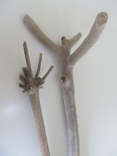 Sweet Driftwood Couple - Unique Driftwood Pieces For Macrame Wall Hanging - Two Unusual Drift Wood Branches Vase Filler by LonelyBeach on Etsy