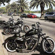 Harley Vintage Custom Bobber – MOBmasker Board: Motorcycle Haven Harley Davidson Iron 883, Harley Davidson Custom Bike, Classic Harley Davidson, Harley Davidson Motorcycles, Custom Motorcycles, Harley 48, Harley Bobber, Harley Bikes, Bobber Chopper