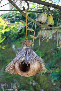 Bird House Feeder, Diy Bird Feeder, Budgie Toys, Coconut Shell Crafts, Florida Design, Bird Houses Diy, Diy Crafts Hacks, Beach Crafts, Wishing Well