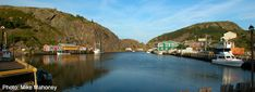 St John's Newfoundland Tourist and Visitor Tips Trans Canada Highway, Newfoundland And Labrador, The Province, St John's, Britain, The Neighbourhood, Park, History, City