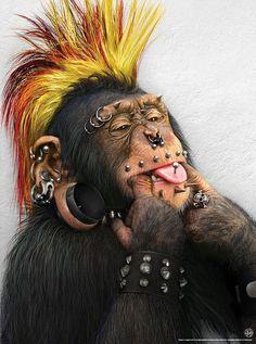 I'm a modern stud monkey.