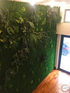 Pannelli in lichene flat e boll moss perfetti per il tuo negozio!
