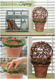 Hometalk :: Grapevine Ball Topiary~ (with Lights!)