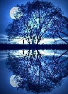 Like water which can clearly mirror the sky and the trees only so long as its surface is undisturbed, the mind can only reflect the true image of the Self when it is tranquil and wholly relaxed.  Indra Devi