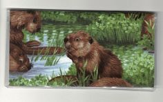 """Cute Beaver in the Wild Checkbook Cover by Tickled Pink Boutique. $5.00. The sturdy clear VINYL COVER encases a fabric bonded design. Measuring 6 1/4"""" x 3 1/4"""",  the cover fits all standard bank checkbooks and banking registers.  All checkbook covers come with a register flap and a duplicate check flap  just like the bank, only flashier.  These checkbook covers are a great alternative to the expensive covers offered by banks and online check companies."""