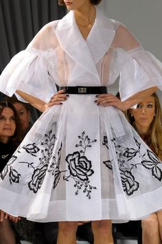 Christian Dior Spring 2012 Runway Pictures - StyleBistro