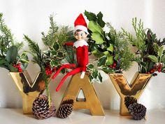 Little Hiccups: Elf on the Shelf: Week 1