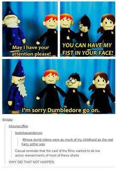 Love Harry Potter Puppet Pals!