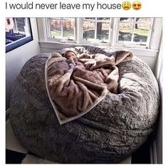 I Would Never Leave My House | Funny Pictures, Quotes, Pics, Photos, Images... - #Funny #Pic - funny, LMAO Pic, New Funny Pic
