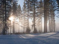 Winter wonderland, on-location from #HGTVDreamHome 2014.