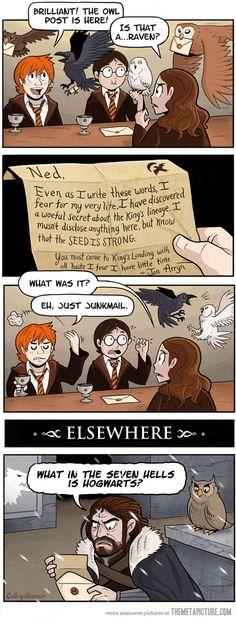 Birds are terrible mailmen. Harry Potter vs Game of Thrones