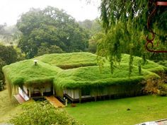 Green architecture / mowing hazzard