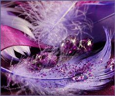 ☆ Alternative Purple ☆彡