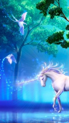 Unicorns are real. Just believe in them