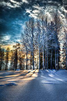 February afternoon by valkeeja.deviantart.com on @deviantART #nature