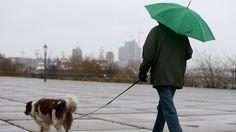 Vorübergehend mild und nass: Winter unternimmt kommende Woche neuen Anlauf