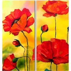 yellow and red: poppies with yellow background