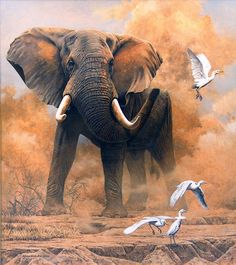 realistic art paintings | Dusty Elephant with Egrets – 2006 Johan Hoekstra Wildlife Art