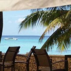 Bayahibe / Santo Domingo / Holidays 2014 / Viva whyndam dominicus beach / pool-bar of resort / relax!!
