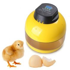 49.96$  Watch here - http://ali8jn.shopchina.info/go.php?t=32806362367 - Convenient Mini Incubator Automatically For Chicken Duck Goose Quail Bird Incubator Automatical  #buymethat