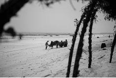 Zanzibar - Tropisches Paradies im indischen Ozean von Tanzania - Geschichten von unterwegs-106