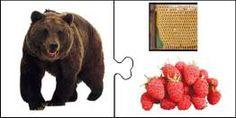 Un juego con fotos. Mírame y aprenderás en Facebook Free Preschool, Preschool Worksheets, Teaching Kids, Kids Learning, Fruit Animals, Animal Habitats, Montessori Materials, Brown Bear, Book Activities