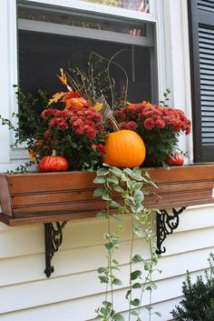 Fall is here!!! If you're looking to fill up your window boxes for a small cost- check out what worked for me~ and I didn't spend a ton of money and since I only have three windows to do on my house {my 3 kitchen windows} it ended up being only a total of $30, each being $10. The vinca vines were left from my summer flowers (and will sometimes come back from year to year- depending on how well they take root), so I always have liked to use them in my planters. The pumpkins I put in between…