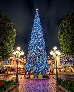Disneyland Christmas, Disney World Christmas, Christmas Scenes, Noel Christmas, Outdoor Christmas, Winter Christmas, Christmas Lights, Christmas Cookies, Christmas Facts