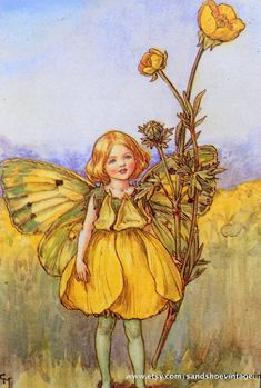 """Vintage print 'The Buttercup Fairy' by Cicely Mary Barker from """"The Book of the Flower Fairies""""; Poem and Pictures by Cicely Mary Barker, Published by Blackie & Son Limited, London [Flower Fairies - Summer] Cicely Mary Barker, Flower Fairies Books, Fairy Pictures, Vintage Fairies, Fantasy Illustration, Fairy Art, Illustrators, Fantasy Art, Drawings"""