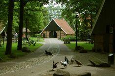 Los Hoes, Ootmarsum, Overijssel, NL