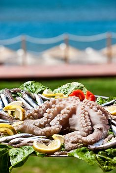 Octopus & Seafood in Greece. Don't eat them they're too amazing!!!