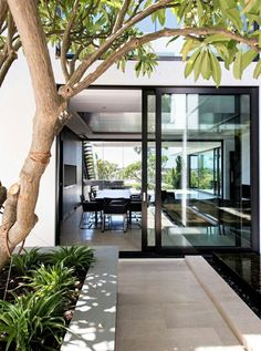 Love the giant sliding door/windows. Black trim, wide rectangles everywhere, the shade from the tree and the blending of spaces. Nice place.