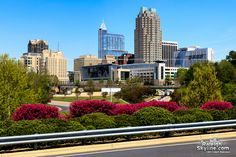 Raleigh, North Carolina ...spring