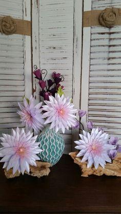Dahlias collection. Shop more at https://squareup.com/store/azilorchids