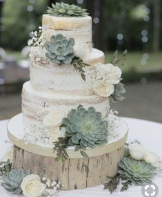Wedding Cake Decorating Supplies Luxury 46 Best Ideas to Incorporate Succulents Into Your Weddings. cakes spring Wedding Cake Decorating Supplies Luxury 46 Best Ideas to Incorporate Succulents Into Your Weddings Country Wedding Cakes, Wedding Cake Rustic, Vintage Wedding Cakes, Rustic Cake, Wedding Cake Tables, Rustic Birthday Cake, Funny Wedding Cakes, Country Weddings, Vintage Weddings