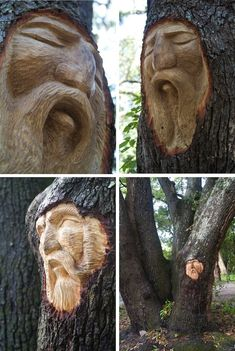Sculptor Releases Mysterious Spirits Already in Trees - My Modern Metropolis