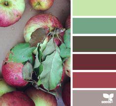 picked palette