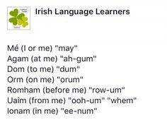 Gaelic Irish, Scottish Gaelic, Irish Celtic, Welsh Language, Language Study, Gaelic Words, Learning Languages Tips, Moving To Ireland, Speaking In Tongues