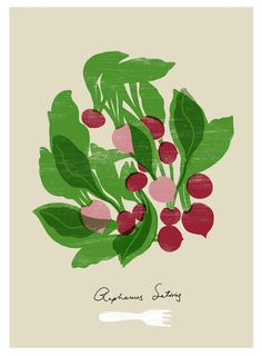 Radish Kitchen Art - Food illustration - Botanical Vegetable Decor archival fine art giclée print by Anek.