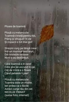pelerina ploaie