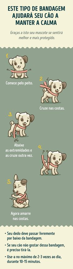 Dog Training Made Easy With These Tips – Useful Pet Care Tips Animals And Pets, Baby Animals, Cute Animals, Dog Care Tips, Pet Care, Dog Items, Dog Training Tips, Baby Dogs, Dog Life