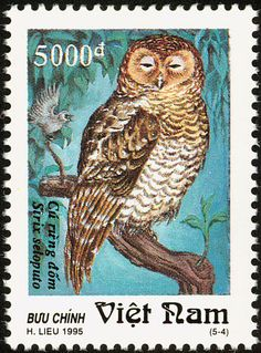 Spotted Wood Owl stamps - mainly images - gallery format