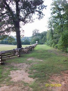 The Hornets Nest, Shiloh National Battlefield, Tennessee Shiloh Battlefield, Battle Of Shiloh, Civil War Books, Southern Plantations, Civil Wars, America Civil War, Civil War Photos, Graveyards, Down South