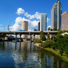 Guess who is in that round building? WilsonHCG is located on the 30th floor of the Sykes building in downtown Tampa, Florida.