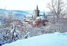 Schloss Wernigerode im Winter