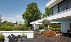 The garden infront of the living-area features a pool, surrounded by a wooden deck and lounge area.