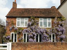 A House with Wisteria in Laleham Village by flicker user Maxwell Hamilton