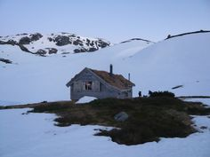 #winterhouse